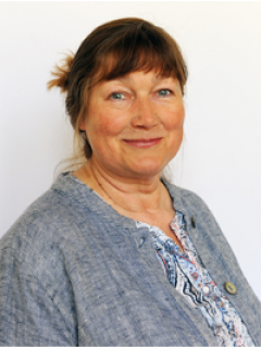 Photograph of Cllr Sue  Allen
