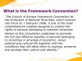 What is the Framework Convention?