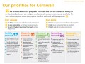 Our priorities for Cornwall